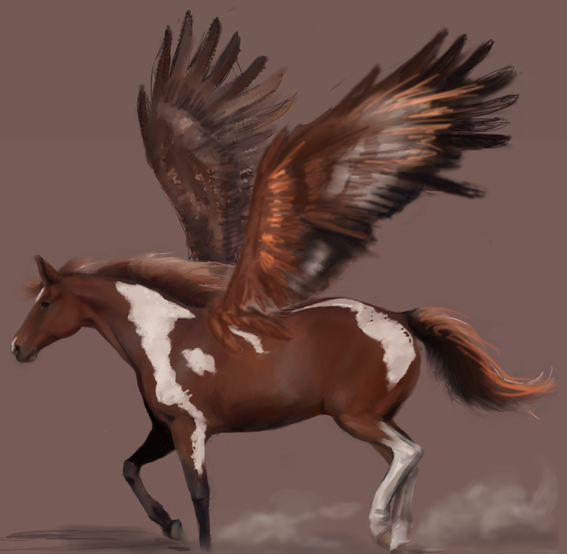 Colorful winged horse - digital painting